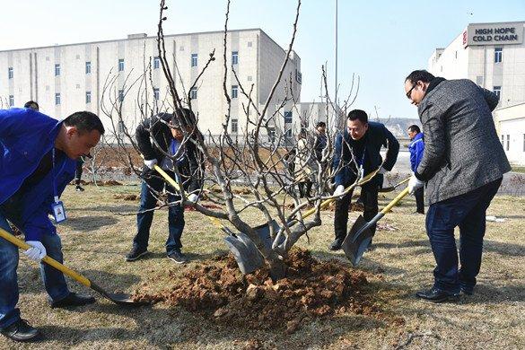 """冷链公司举办""""我为冷链添点美""""植树活动"""