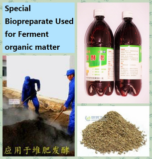 微生物Inoculant為Decomposing Organic Matters (DIY有機肥料)