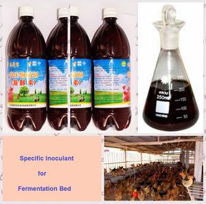 為做發酵河床使用的藻糞生物preparate