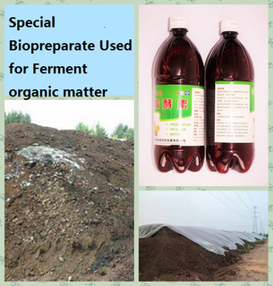 用于fermment肥料的藻糞生物preparate