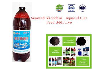 海草微生物水產養殖結轉附加