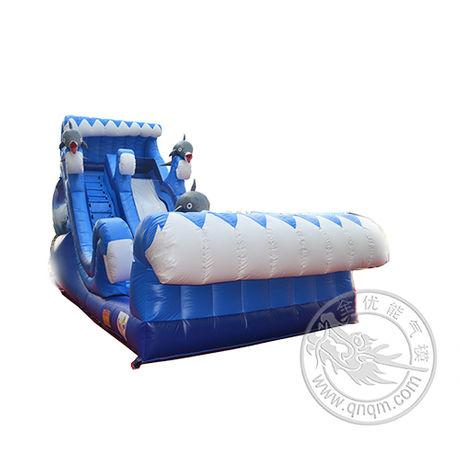 CHSL251海豚单滑道充气滑梯