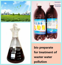 海草Bio Agent为Waste Water Pollution的Treatment