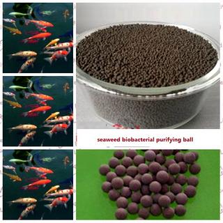 海藻生物凈化海草解壓縮做的球
