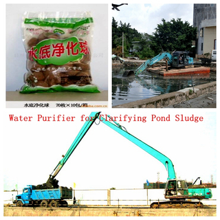 海草Microbial Aquaculture Ball Water Purifier為Clarifying Pond Sludge