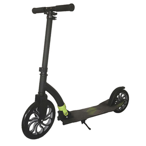 Full aluminum 2 wheel foldable scooter with 250mm front wheel