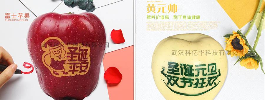 苹果印字油墨