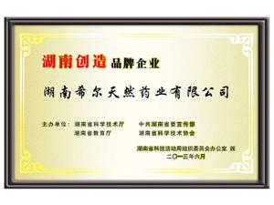 湖南创造品牌企业