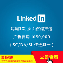 LinkedIn (linkedin) Package-Advertising Standard Edition (¥52788/year)