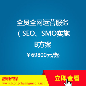 Full-network operation service for all employees [SEO, SMO implementation] Plan B (from ¥69800)