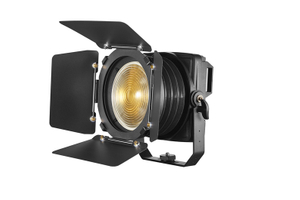 200W Outdoor LED Fresnel  Spotlight