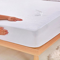 Queen Size Fitted Sheet Hypoallergenic Waterproof Mattress Protector